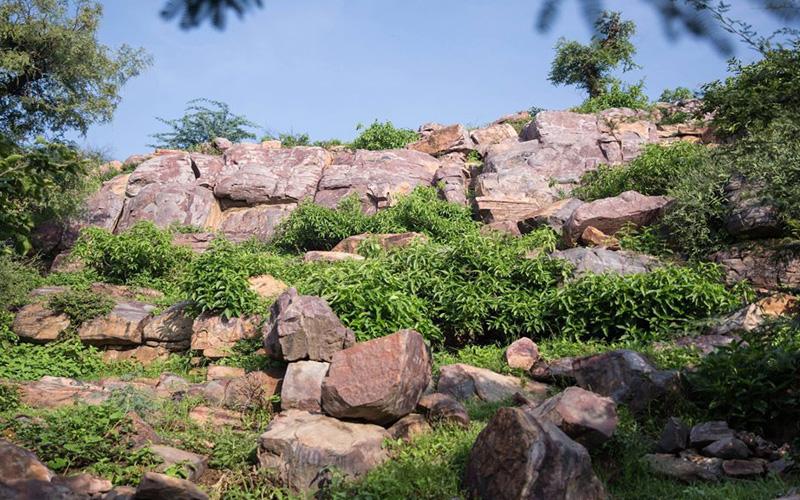 Goverdhan Parikrama Marg