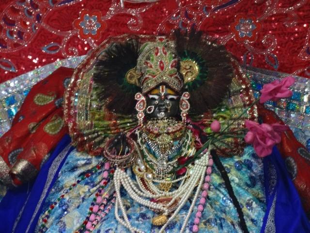 Shri Yamuna Maharani Ji Darshan