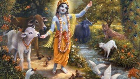 Bahut Samay Ki Baat Hai Shri Vrindavan Main