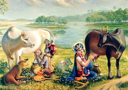 Theam Of Agrasen Maharaja Gaushala
