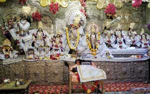Shri Radha Damodar Ji