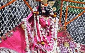 Shri Banke Bihari Ji Pushp Evan Pushp Haar Seva
